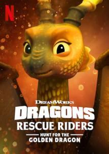 1 48 214x300 - دانلود انیمیشن Dragons: Rescue Riders: Hunt for the Golden Dragon 2020 با دوبله فارسی