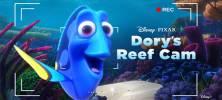 2 83 222x100 - دانلود انیمیشن Dory's Reef Cam 2020