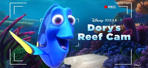 2 83 - دانلود انیمیشن Dory's Reef Cam 2020