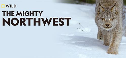 دانلود مستند The Mighty Northwest 2017 شمالغرب توانمند