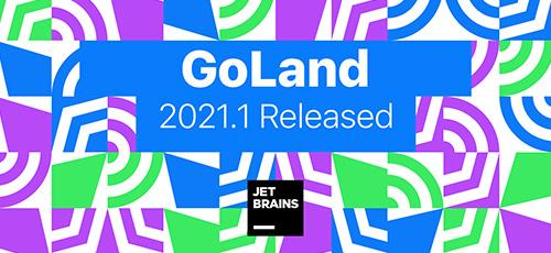 1 48 - دانلود JetBrains GoLand 2021.1.1 Win+Mac+Linux برنامه نویسی به زبان گو