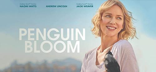 2 21 - دانلود فیلم Penguin Bloom 2020 زیرنویس فارسی